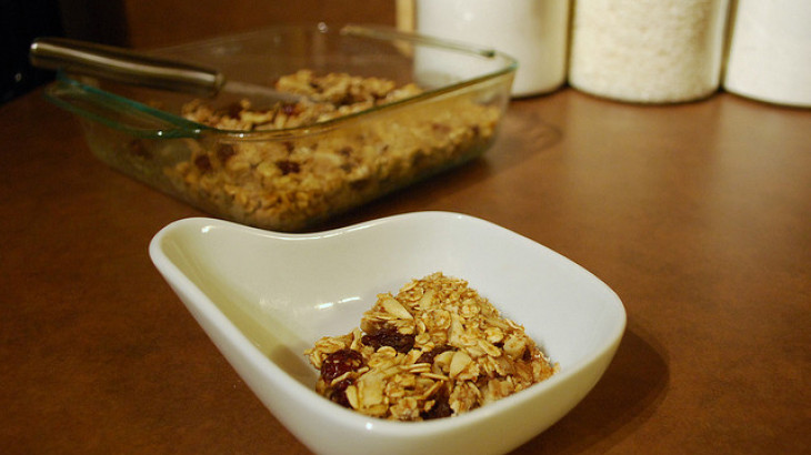 Granola Squares